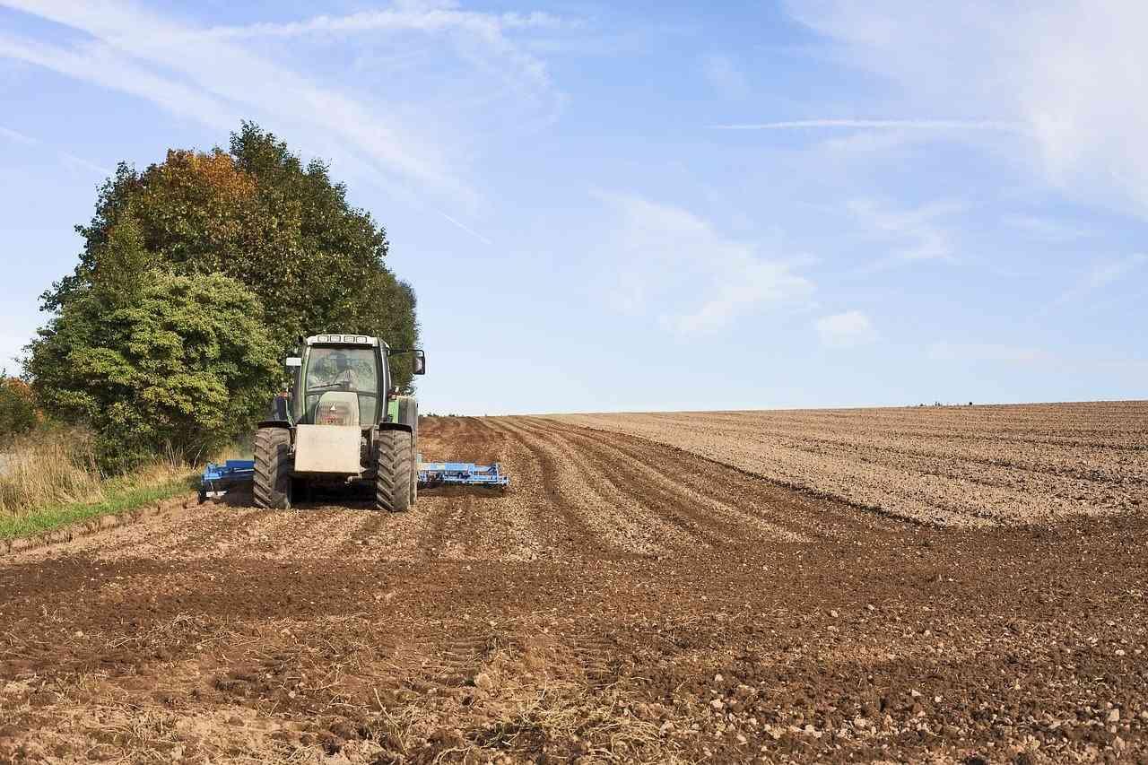 Tłumaczenia rolnicze online - biuro tłumaczeń online