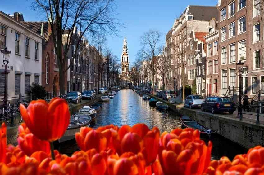 Tłumacz przysięgły języka niderlandzkiego